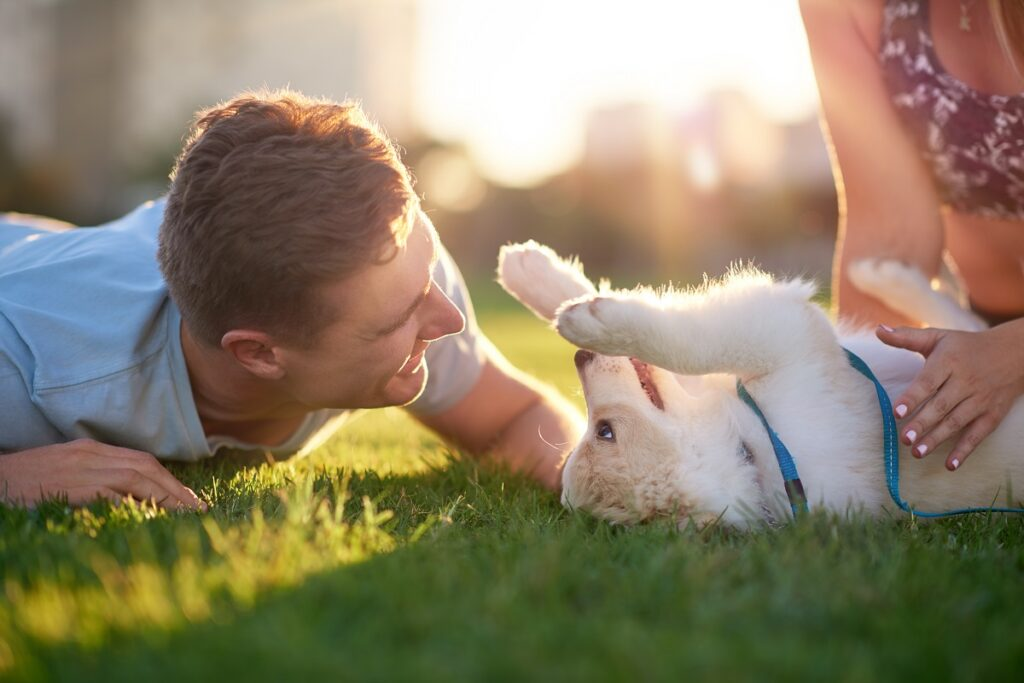 Couple playing with their puppy dog at sunset